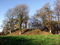 Wolf's Castle mound - geograph.org.uk - 619504.jpg