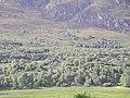 Woodland, lower slopes of Cruban Beag - geograph.org.uk - 32180.jpg