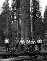 Woods crew, Manary Logging Company, Toledo, ca 1925 (KINSEY 2415).jpg