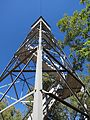 Woody Mountain Lookout Tower (looking up).jpg