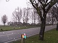 Woudseweg - De Lier - 2008 - panoramio.jpg