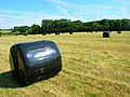 Wrapped Bales near Forge House - geograph.org.uk - 513534.jpg