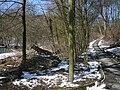Wuppertal Lüntenbecker Weg 0057.jpg