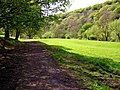 Wye Valley Walk - geograph.org.uk - 418333.jpg