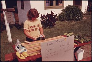 Lemonade stand - A roadside lemonade stand in Georgia, July 1975, also selling  squash and cucumbers.