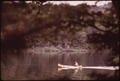 YOUNG BOY CANOEING ON TWITCHELL LAKE, FRAMED BY RED SPRUCE BRANCHES IN THE ADIRONDACK FOREST PRESERVE - NARA - 554609.tif