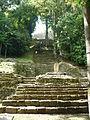 Yaxchilán subida al templo principal.JPG