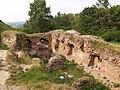 Zamek w Tarnowie ffolas 03.jpg