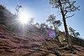 Zion National Park (15187999667).jpg