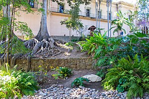 Zoro Garden - Zoro Garden in Balboa Park