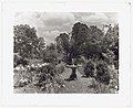 """Enniscorthy,"" Albert Henry Morrill house, Country Road 627, Keene, Green Mountain Albermarle County, Virginia. Birdbath LCCN2008679256.jpg"