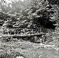 """""""Most"""" čez potok med krajema Slavče - Gradno 1953.jpg"""