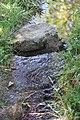 «Արփի լիճ» ազգային պարկ-14.jpg