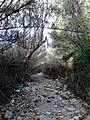 Ρέμα κοκκιναρά 9 - panoramio.jpg