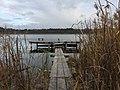 Гнялбище - озеро у Волинській області.jpg