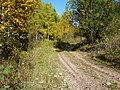 Дорога на перевал Сухих Гор - panoramio.jpg