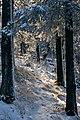 Еще осень, а в горах уже настоящая зима II - panoramio.jpg