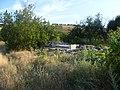 Заброшенный дачный посёлок - panoramio (68).jpg