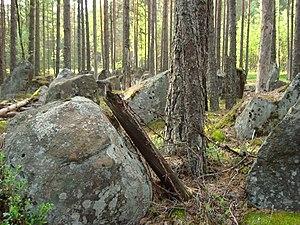Flexible defense - Anti-tank obstacle in wood, Mannerheim Line