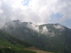 Леса Кавказа.jpg
