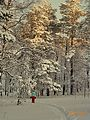 Мороз и солнце - panoramio (2).jpg
