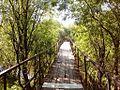 Мост - panoramio (11).jpg