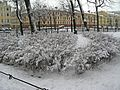 Никольский сад01.jpg