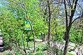 Парк Нивки Західна частина. Фото 1.jpg