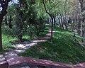 Парк Памятник Мужества.jpg