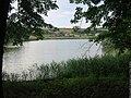 Полчаниновский приусадебный парк, пруд.jpg