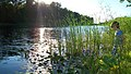"""Рассвет на оз.""""Майское""""(Исм.Альберт) - panoramio.jpg"""