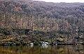 Скелі Коцюбинського. Погляд з протилежного брегу P1350225.jpg