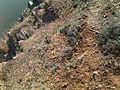Скелі МоДРу - грунт.jpg
