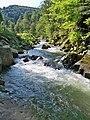 Сколівські Бескиди (національний природний парк).Біля водоспаду Камянка.jpg
