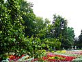 Центральний парк в Вінниці.jpg