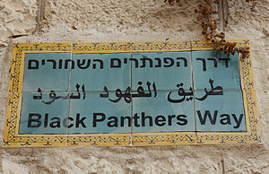 Black Panthers (Israel) - Image: נקמת הפנתרים השחורים 2 (7642296558)