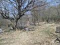 საბოლოო განსასვენებელი - panoramio.jpg