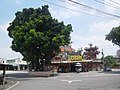 上帝廟前的榕樹 - panoramio.jpg