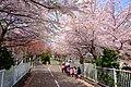 北海道道1148号札幌恵庭自転車道線 (Shiroishi cycling road) - panoramio.jpg