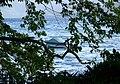 屈斜路湖 Kussharo Lake - panoramio (3).jpg