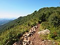 山脊 - Ridge Trail - 2012.08 - panoramio.jpg