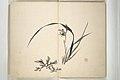 椿椿山画 『椿山翁画譜』-Chinzan Picture Album (Chinzan-ō gafu) MET 2013 671 03.jpg