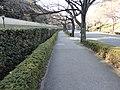 竹橋 - panoramio (2).jpg