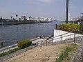 隅田川 - panoramio (5).jpg