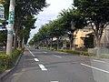 鷹の台・成田屋近く - panoramio.jpg