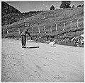 - doch Zureden hilft (Skilt- Bonasjøen) (7129720599).jpg