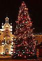 02014 Weihnachtsbaum auf dem Sanoker Platzmarkt.JPG