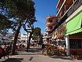 07590 Es Pelats, Illes Balears, Spain - panoramio (10).jpg