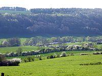 07 la vallée du Bany.JPG