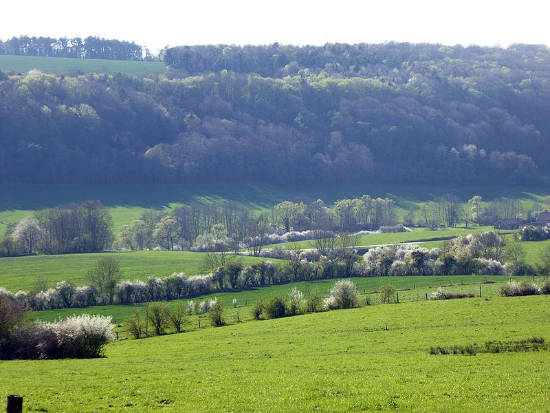 La vallée au printemps